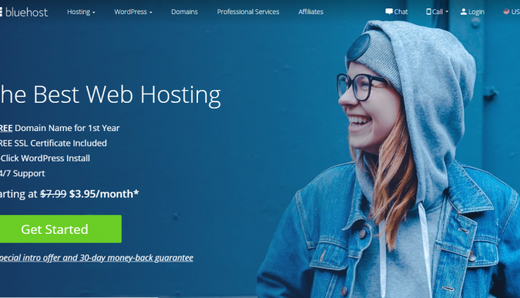 What Does Hosting Means and Why Blue Host Is the Best Hosting?